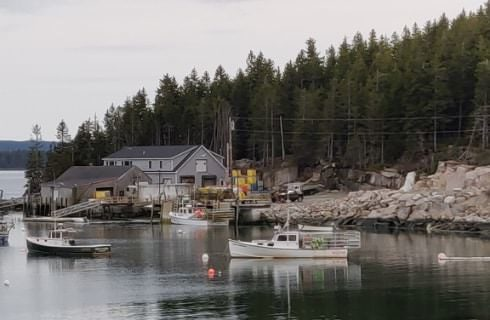 Gray buildings and a boat dock surrounded by rocks and trees next to a body of water with boats on the water